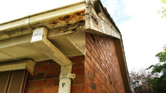 Gutters and fascia boards